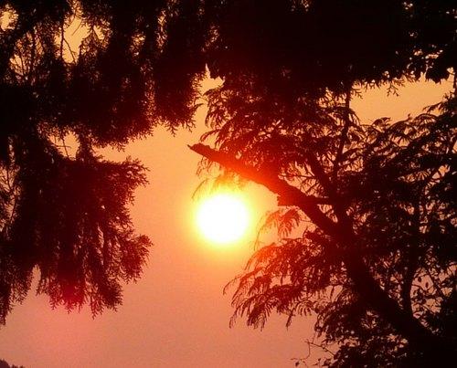 22夕陽.jpg