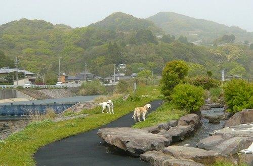 河川敷公園6.jpg